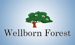 wellbornforest